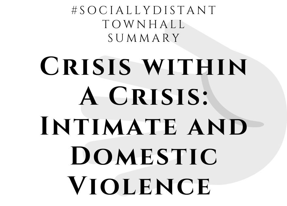 Crisis within A Crisis: Intimate and Domestic Violence Summary