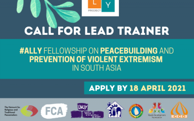 Call for Consultant: Lead Trainer for ALLY Fellowship Programme
